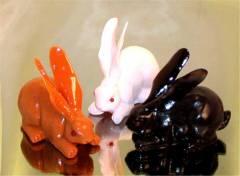 trabbits.jpg