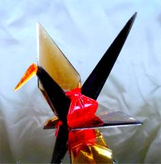tamberwings.jpg