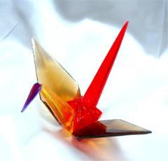 tamberwings2.jpg
