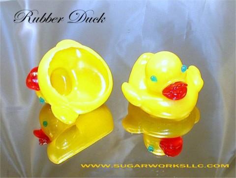 Duck1 jpg